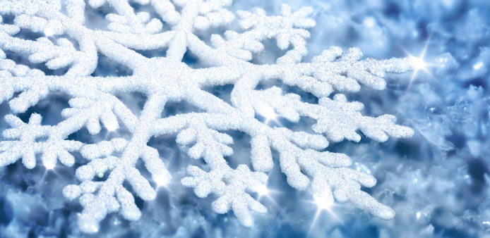 neige-flocon_710x338.jpg